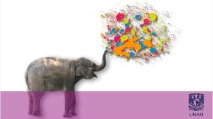 20130416.elefante_ser_creativo